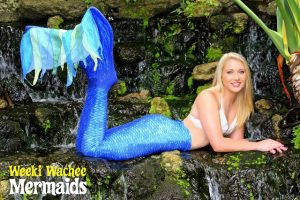 mermaidamanda